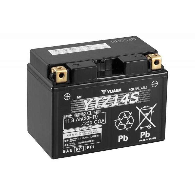 Yamaha Warrior Battery